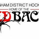 REDBACKS share honours with WASPS
